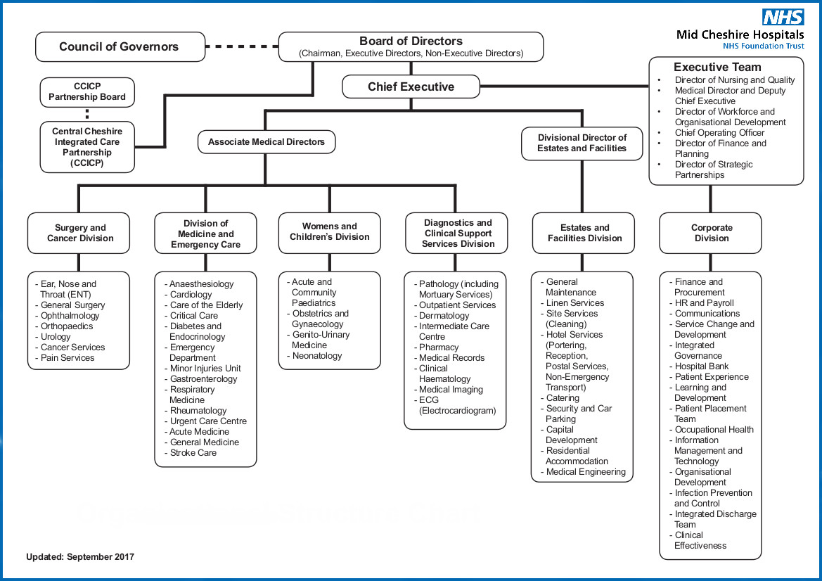 organisational structure chart - Organisational Hierarchy Chart